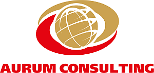 Valo Partner Aurum Consulting